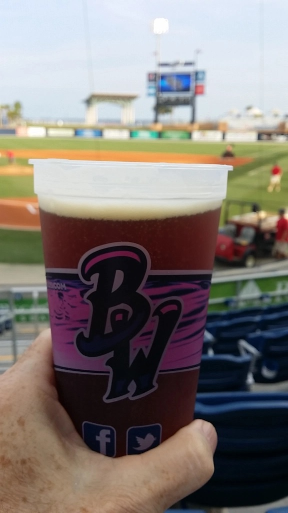 Blue Wahoos Baseball